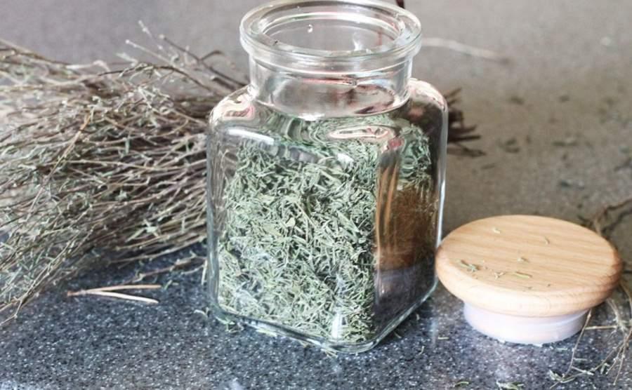 Jak suszyć zioła