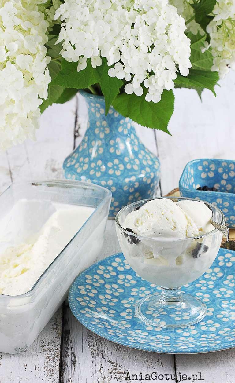 domowe-lody-waniliowe-3